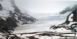 Athabasca Glacier - Columbia Icefield