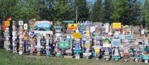 Signpost Forest - Watson Lake, Yukon2