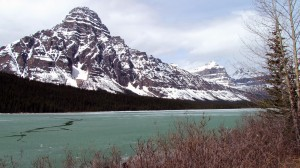 WaterFowl Lake with green ice