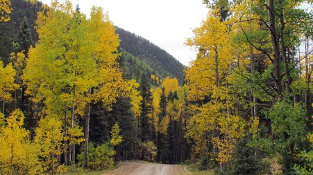 LaPlata Canyon in Fall9
