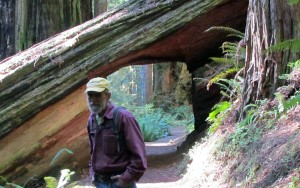 Tom on trail