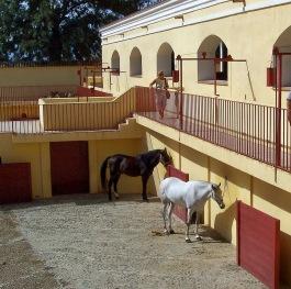 Plaza de Toros2