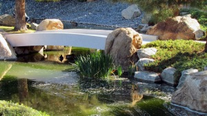 Japanese Garden13