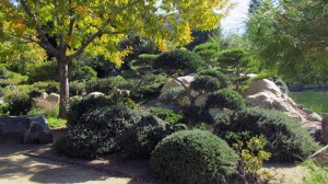 Japanese Garden14