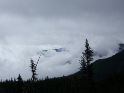 Hurricane Ridge (10)