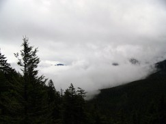 Hurricane Ridge (14)