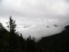 Hurricane Ridge (14)