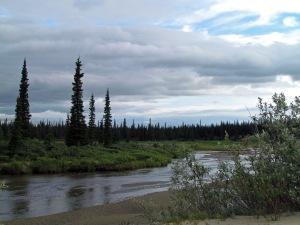 Kovet Creek2